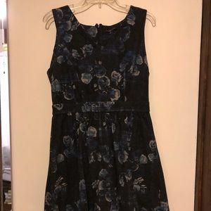 Like New! Thakoon for DesigNation (Kohl's) Dress!